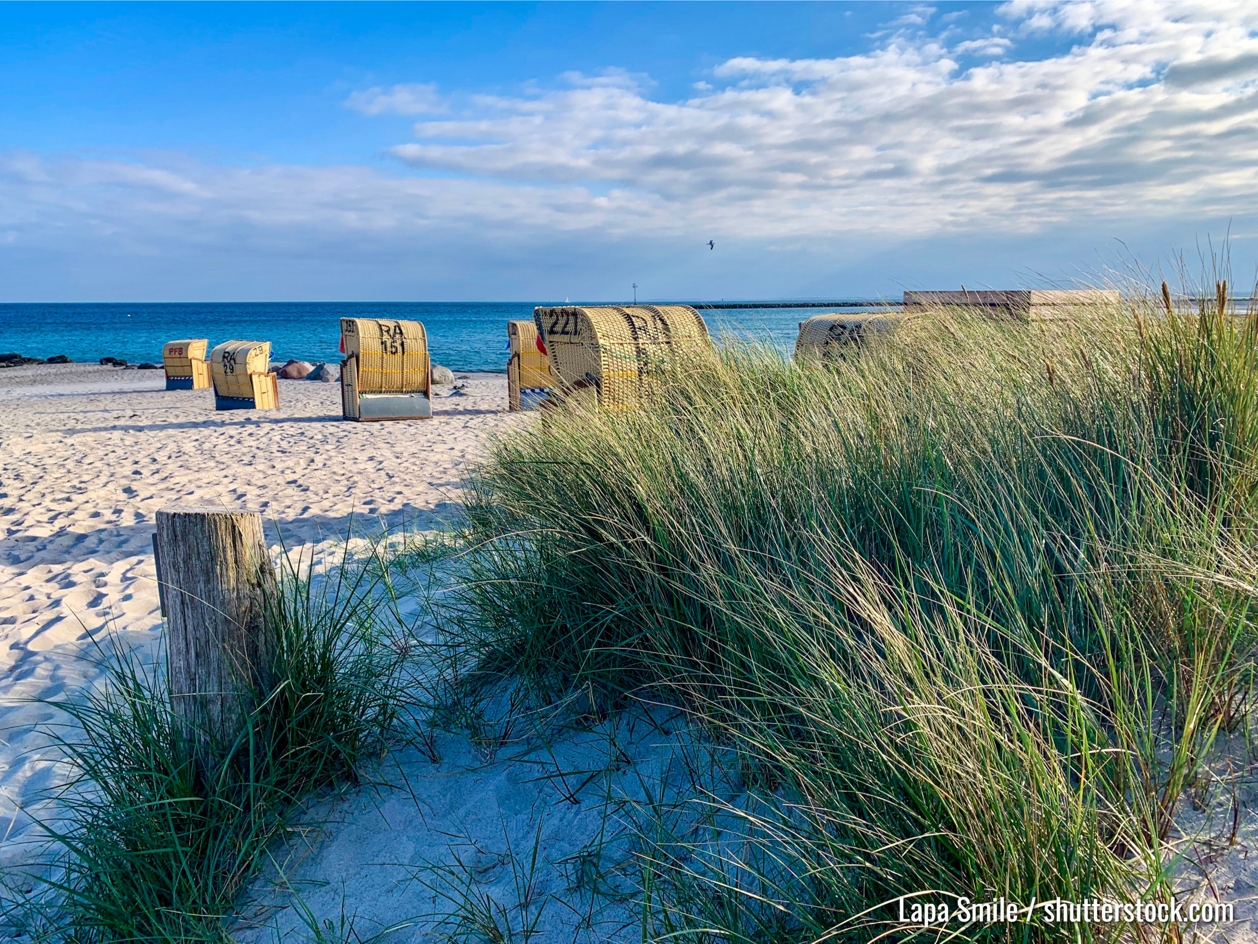 Aussicht auf den Sandstrand, die traditionellen norddeutschen Liegestühle und das grüne Gras auf der Insel Fehmarn auf Ostsee